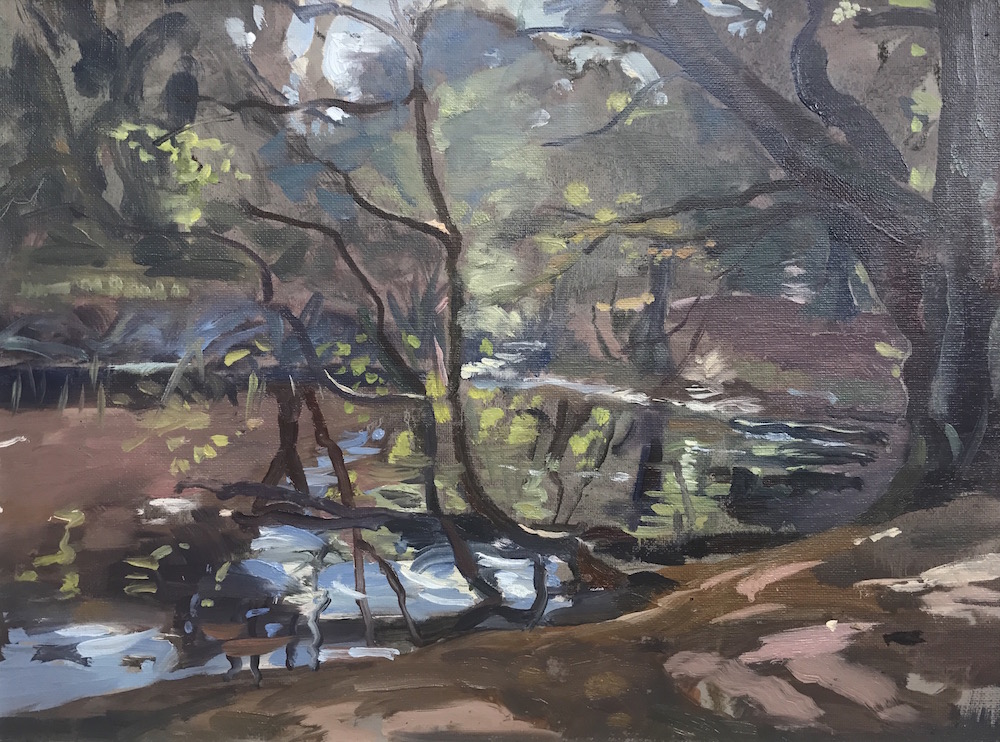"Jurassic light Sandy Road Pond Hampstead. 12"" x 16 "" available £200"
